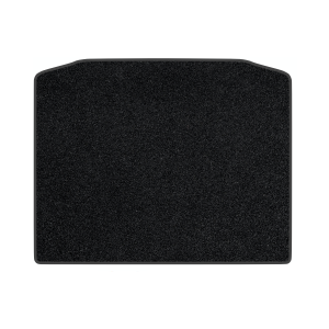 Mitsubishi Asx (2010) Carpet Boot Mat